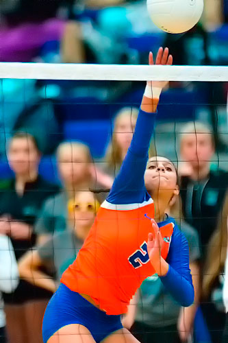 Isabell Pannell, Lakes Lancers Volleyball
