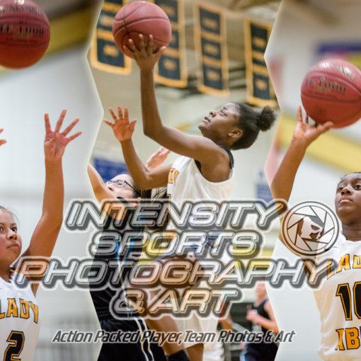 Lincoln Abes Basketball Girls JV