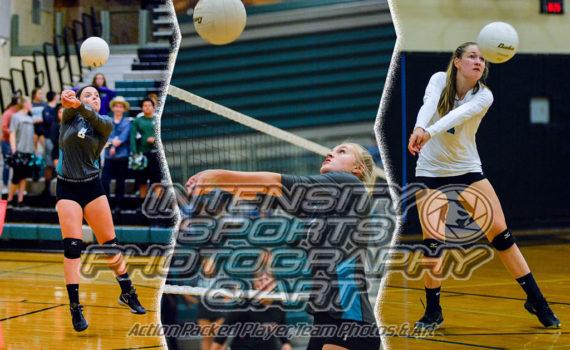 Bonney Lake Panther Volleyball
