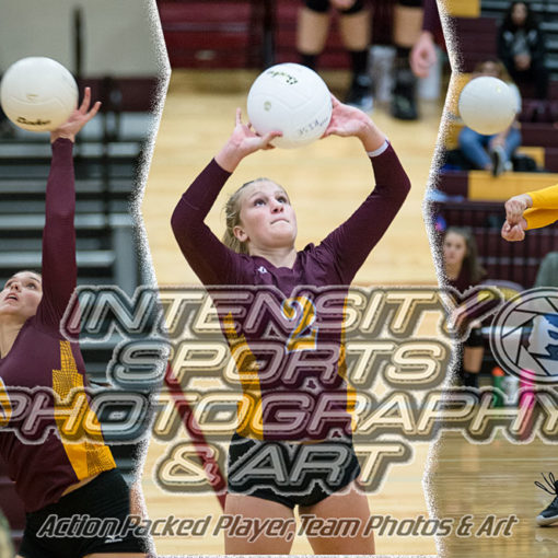 Whiteriver Hornets Volleyball