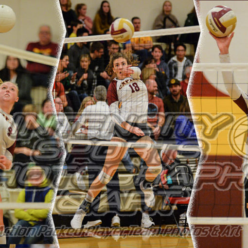 Capital High School Cougars Volleyball