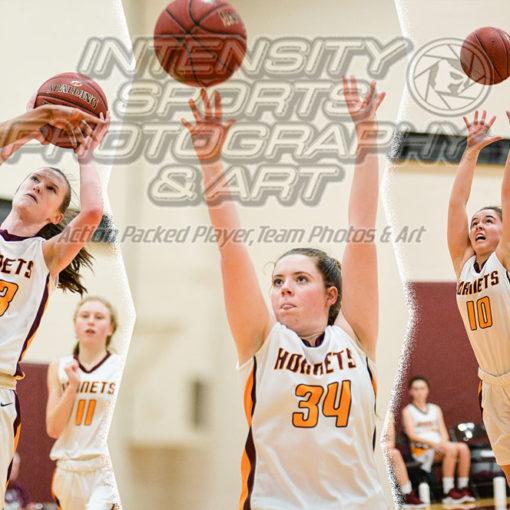 White River Hornet Basketball JV Girls