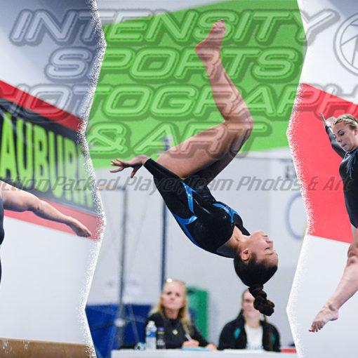 Bonney Lake Panther Gymnastics