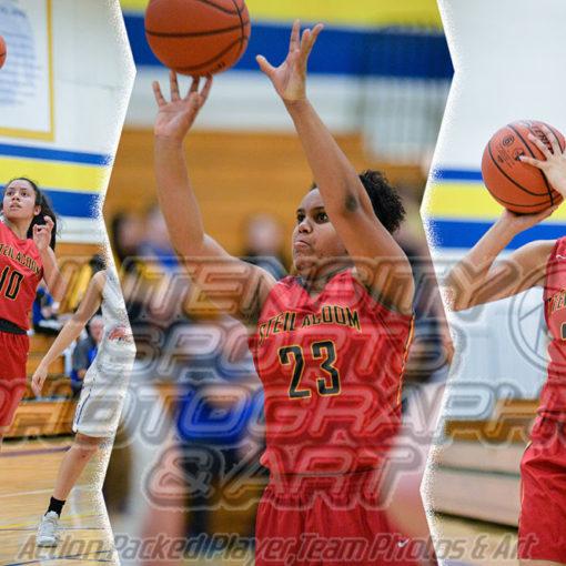 Steilacoom Sentinels Girls Basketball