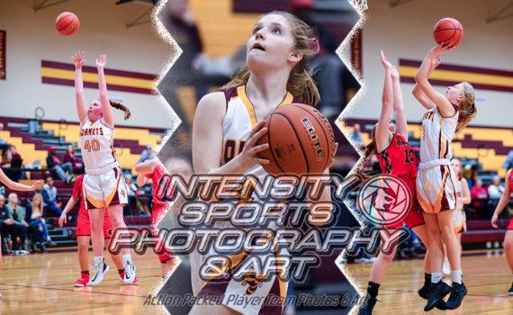 White River Basketball Hornets Girls 2020